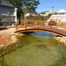lago - ponte 2