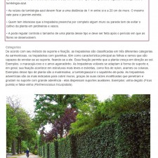 Revista Casa & Construção  n°.109, Editora Escala _Seção Paisagismo_Fachada Natural_ página 21_Outubro de 2014