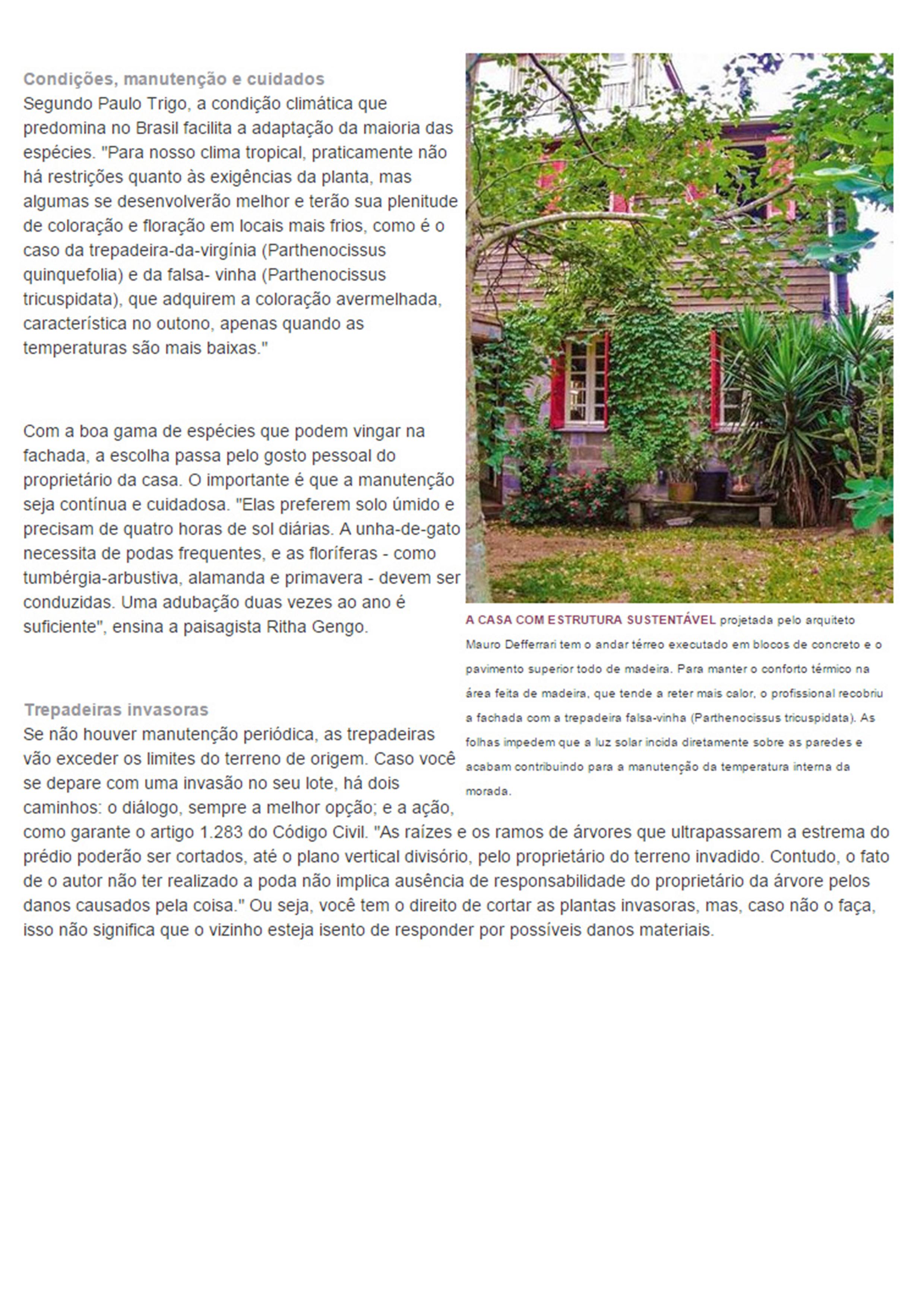Imagens de #778236 Paisagismo Bloco Autocad Agapanto Planta Baixa Agapanthus Africanus  2480x3508 px 3464 Bloco Autocad Banheiro Vista