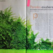 Revista Plantas Flores e Jardins n° 90, Editora Escala _Seção Chuva de Ideias | Trepadeiras |  páginas 22 à 27 | Fevereiro de 2014