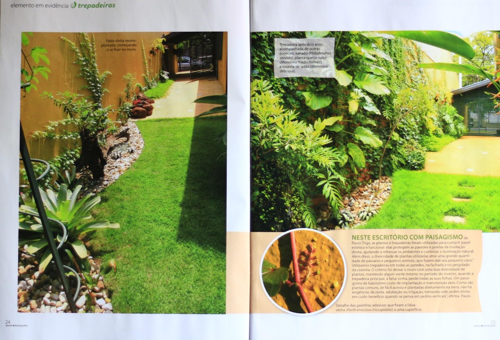 Revista Plantas Flores e Jardins n° 90, Editora Escala Seção Chuva